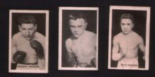 Trade cards Boxing boxers 1922 Johnny Wilson & more #951